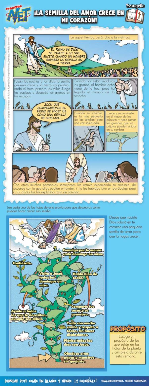 Snto evangelio dominical ilustrado para niños 14 junio 2009